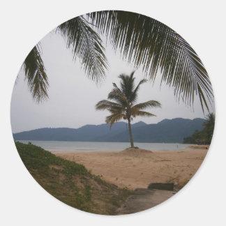 Coconut tree classic round sticker