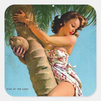Coconut Tree Pin Up Square Sticker
