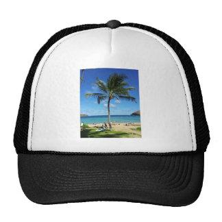 Coconut Trees Hat
