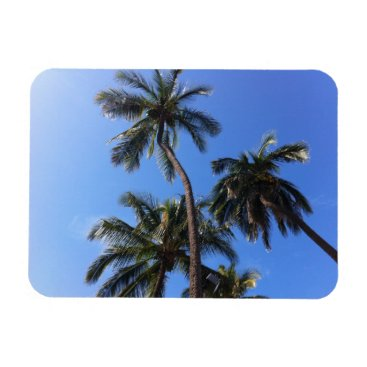 Coconut Trees in Kihei, Maui, Hawaii Magnet
