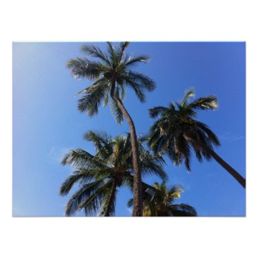 Beach Themed Coconut Trees in Kihei, Maui, Hawaii Poster
