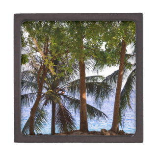 Coconut Trees Ocean Scenic View Gift Box