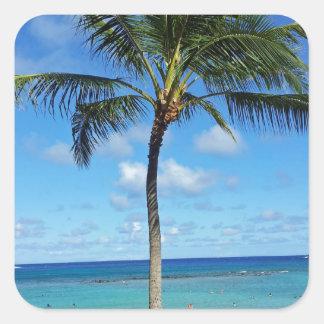 Coconut Trees Square Sticker