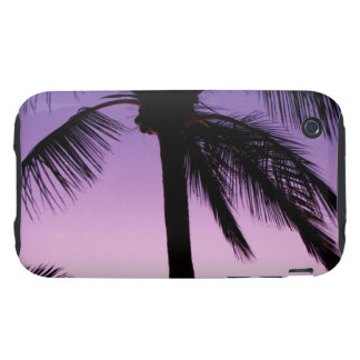 Coconuts in the Wind iPhone 3 Tough Cover