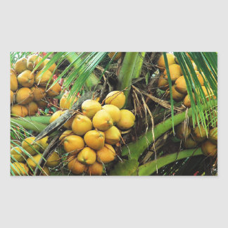 coconuts on the tree rectangular sticker