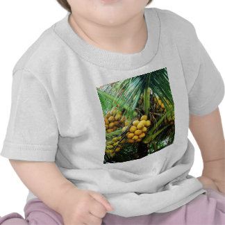 coconuts on the tree t-shirts