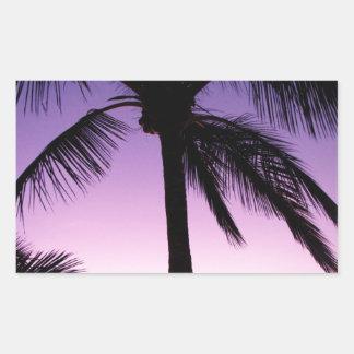 Cocos en el viento pegatina rectangular