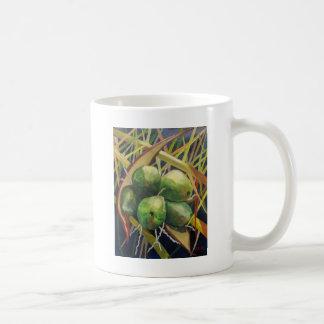 Cocos verdes tazas de café