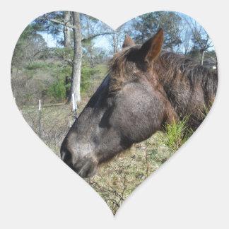 Cocos y caballo color nata pegatina en forma de corazón
