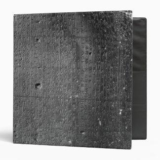 Code of Hammurabi, detail of column inscription Vinyl Binder
