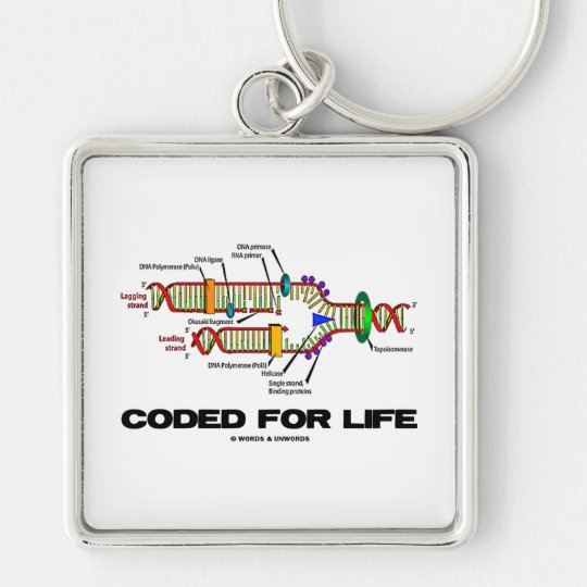 Coded For Life (DNA Replication) Keychain