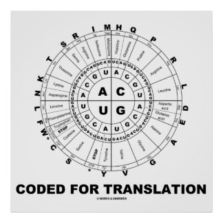 Coded For Translation (RNA Codon Wheel) Poster