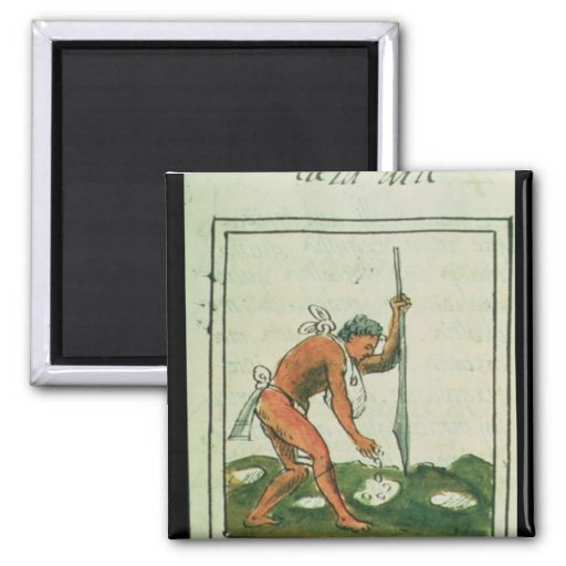 Codex florentino de Bernardino de Sahagun Imán De Frigorífico