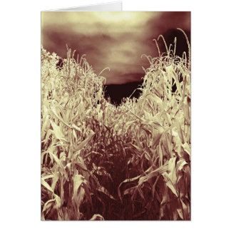 Codgers in the Corn Greeting Cards