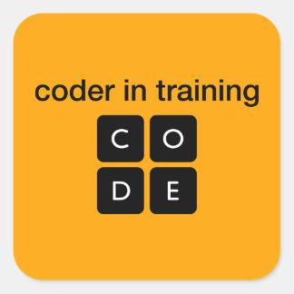 Codificador en el entrenamiento calcomanías cuadradases