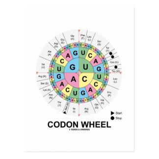 Codon Wheel (RNA Codons Amino Acids) Postcard