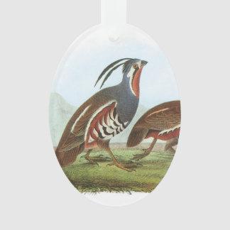 Codornices de montaña por Audubon