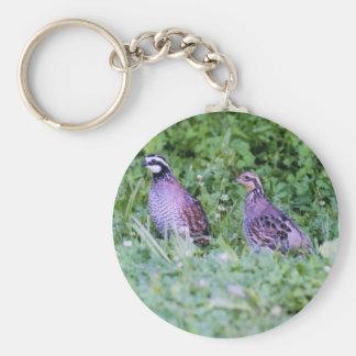 Codornices septentrionales llavero redondo tipo pin