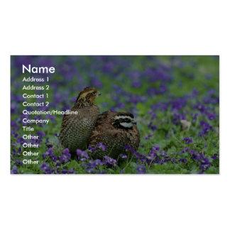Codornices septentrionales tarjetas de visita