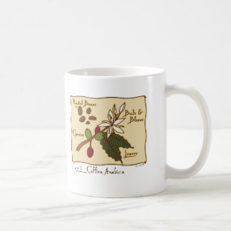 Coffea Arabica Coffee Mug