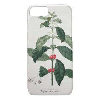 Coffea Arabica from 'Phytographie Medicale' by Jos iPhone 8/7 Case
