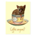 Coffee Anyone? kitten postcard