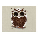 Coffee Bean Owl Postcard