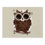 Coffee Bean Owl Postcards