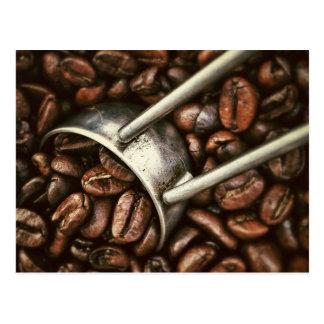 Coffee Bean Post Card