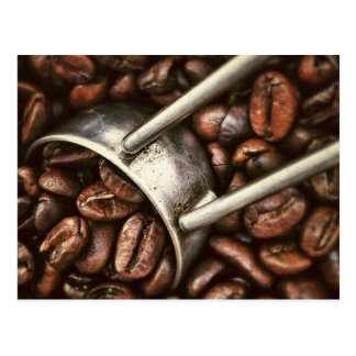 Coffee Beans and Scoop Postcard