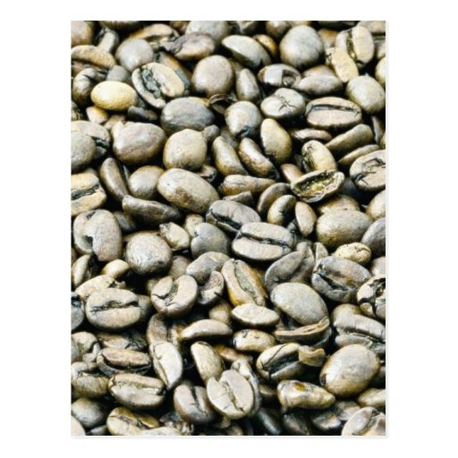 Coffee Beans Background Postcard