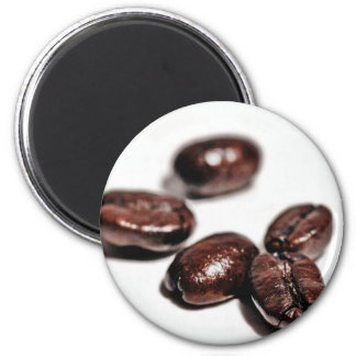 Coffee Beans Shot In My New Studio Magnet