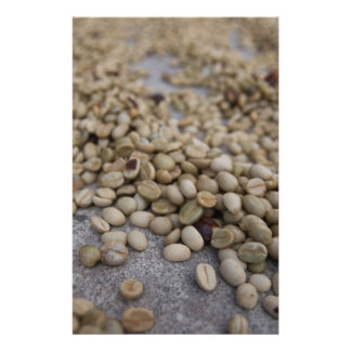Coffee beans stationery