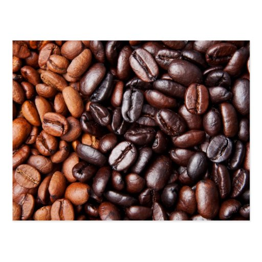 Coffee Beans - whole light and dark roasted Postcard