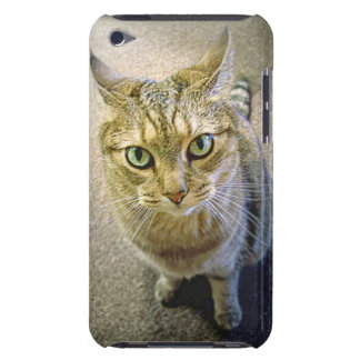 Coffee Cat Cover iPod Touch Covers