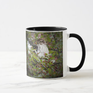 Coffee cup with hawk pictures