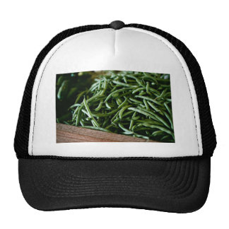 Coffee Themed, Fresh French Green Beans After Harv Trucker Hat