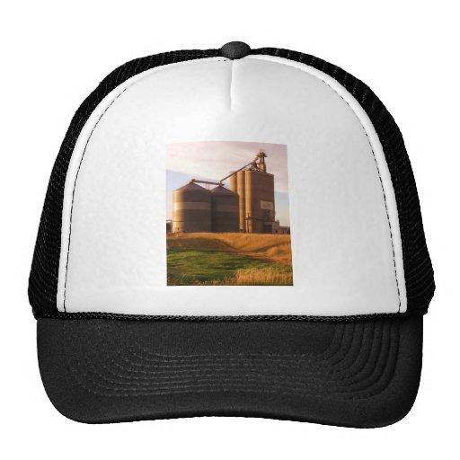 Cofre del tesoro de la granja gorra