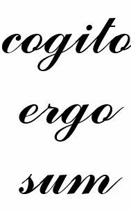 cogito ergo sum  Cogito Ergo Sum Drinkware | Zazzle