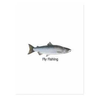 Coho Salmon Postcard