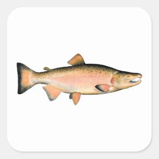 Coho - salmones de plata (que frezan fase) pegatina cuadrada