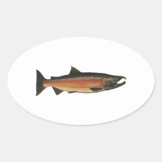 Coho - Silver Salmon (spawning phase) Oval Sticker