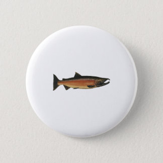 Coho - Silver Salmon (spawning phase) Pinback Button