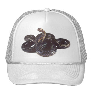 Coiled and Ready to Strike Snake Trucker Hat
