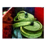 Coiled Fire Hoses Postcard