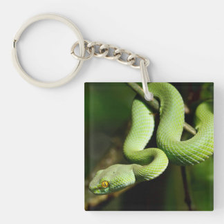 Coiled Green Tree Snake Keychain