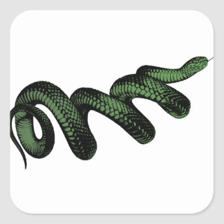 Coiled Snake Square Sticker