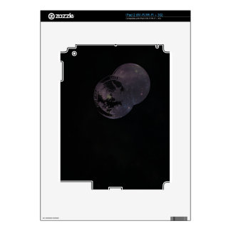 Coins and Constellations iPad 2 Decals