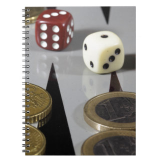 Coins on a backgammon board notebooks