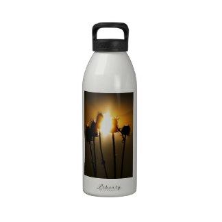 Coja el sol botellas de agua reutilizables